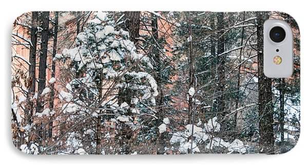 West Fork Snow IPhone Case by Tam Ryan
