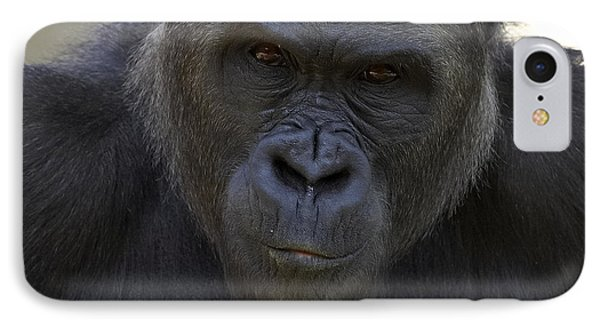 Western Lowland Gorilla Portrait IPhone 7 Case by San Diego Zoo