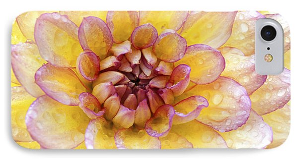 Wet Dahlia Phone Case by Paul W Faust -  Impressions of Light