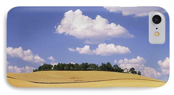 Wheat Crop In The Field, Washington IPhone Case
