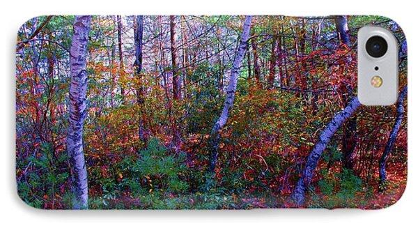 White Birch - Pocono Mountains IPhone Case by Susan Carella