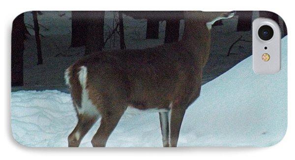 White Tail Deer Phone Case by Brenda Brown