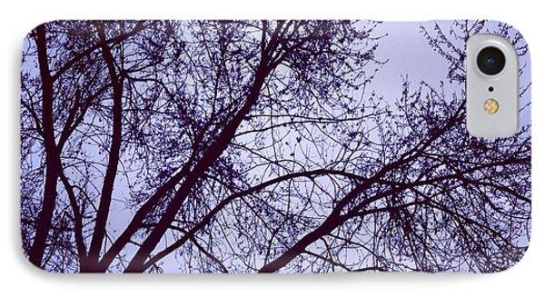 Winter Blues IPhone Case by Toni Martsoukos