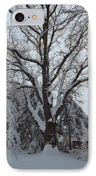 Winter Oak IPhone Case by John Wartman