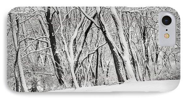 Winter Park Landscape IPhone Case by Elena Elisseeva