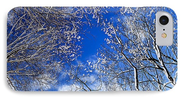 Winter Trees And Blue Sky Phone Case by Elena Elisseeva