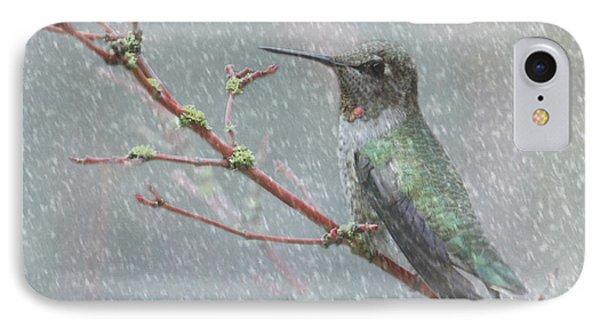 Wintering Hummingbird IPhone Case