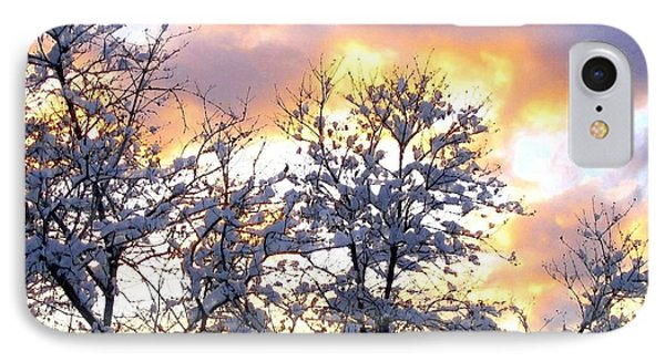 Wintry Sunset Phone Case by Will Borden