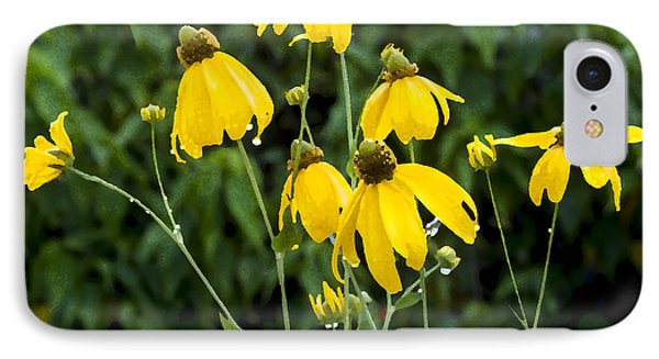 Yellow Cone Flowers Rudbeckia IPhone Case