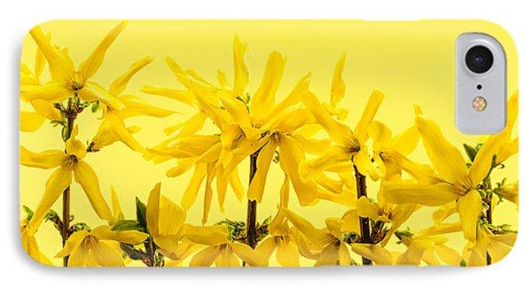Yellow Forsythia Flowers Phone Case by Elena Elisseeva