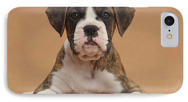 Boxer Puppy Phone Case by Mark Taylor