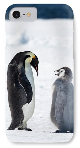 Cape Washington, Antarctica IPhone Case by Janet Muir