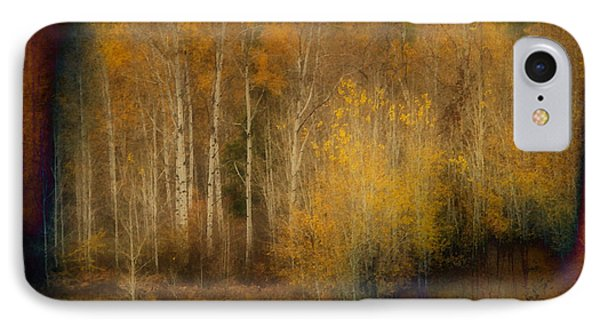 Fall At Sheep Creek IPhone Case