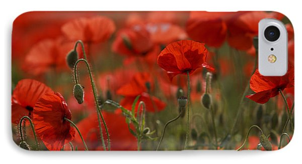 Red Poppy Flowers IPhone Case by Nailia Schwarz