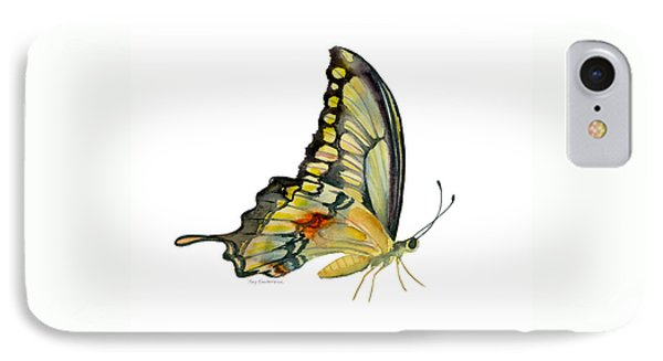 104 Perched Swallowtail Butterfly IPhone Case by Amy Kirkpatrick