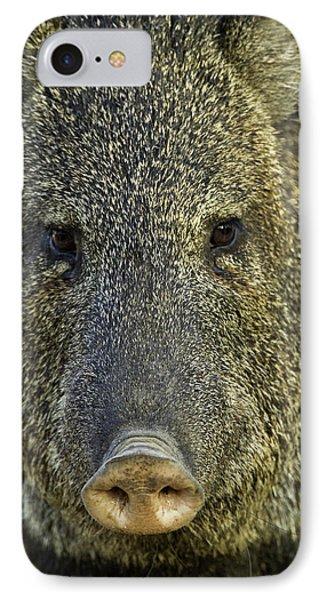 Usa, Texas, Santa Clara Ranch IPhone Case by Jaynes Gallery