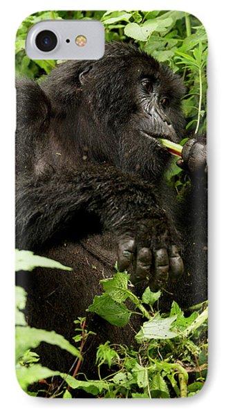 Africa, Rwanda, Volcanoes National IPhone Case
