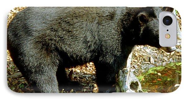 Florida Black Bear IPhone Case