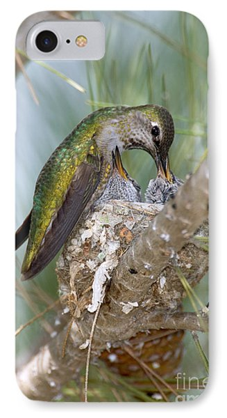 Annas Hummingbird IPhone Case