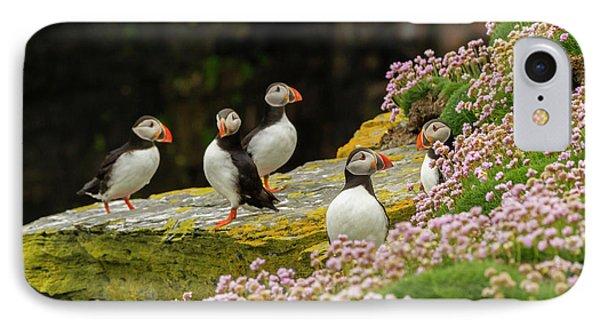 Europe, Scotland, Shetland Islands IPhone Case