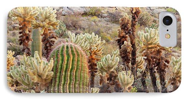 Usa, Arizona, Tucson IPhone Case