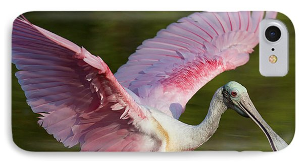 Usa, Florida, Everglades National Park IPhone Case