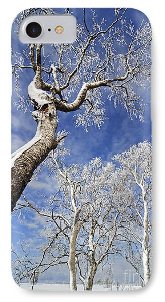 130201p343 Phone Case by Arterra Picture Library