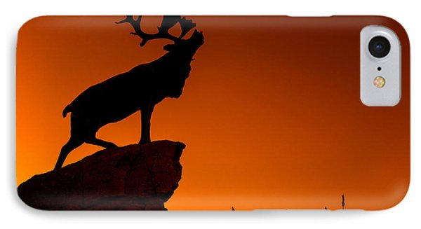 130918p141 IPhone Case by Arterra Picture Library