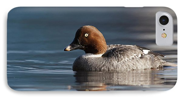 Canada, British Columbia, Vancouver IPhone Case by Rick A Brown