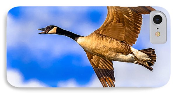 IPhone Case featuring the photograph Canada Goose by Brian Stevens