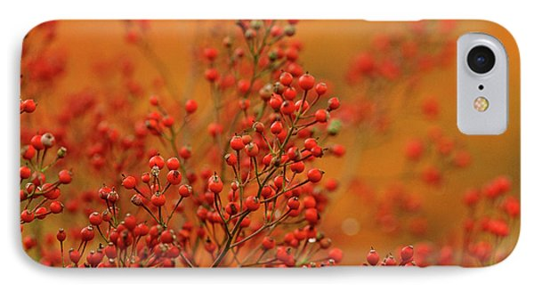 Usa, Pennsylvania IPhone Case by Jaynes Gallery