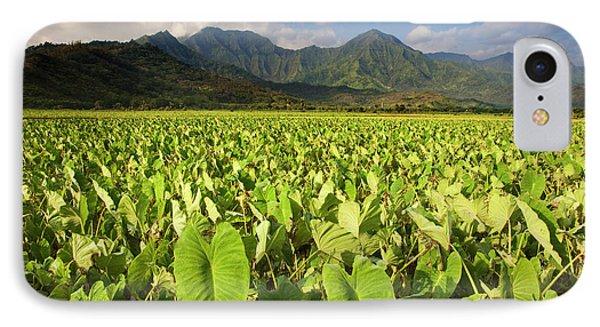 Usa, Hawaii, Kauai IPhone Case by Jaynes Gallery