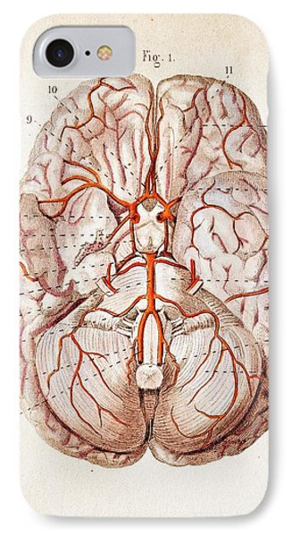 1840 Historical Image Brain Blood Supply IPhone Case by Paul D Stewart