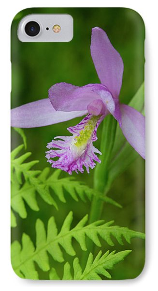 Canada, Quebec, Mount St-bruno IPhone Case by Jaynes Gallery