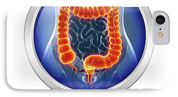 Human Digestive System IPhone Case