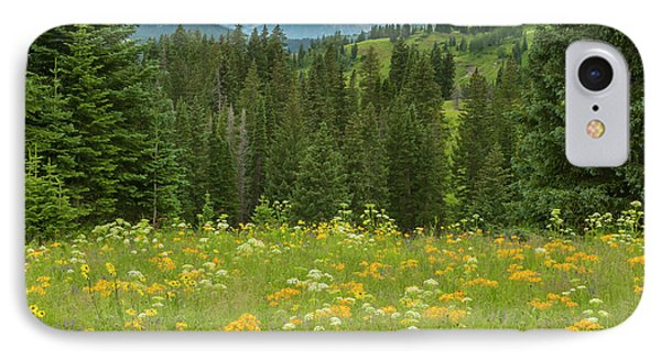 Usa, Colorado, Gunnison National Forest IPhone Case by Jaynes Gallery