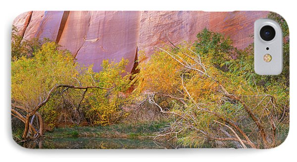 Utah, Glen Canyon National Recreation IPhone Case by Jaynes Gallery