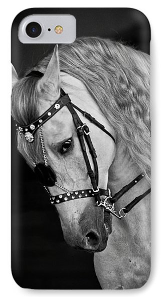 Andalusian IPhone Case by Wes and Dotty Weber