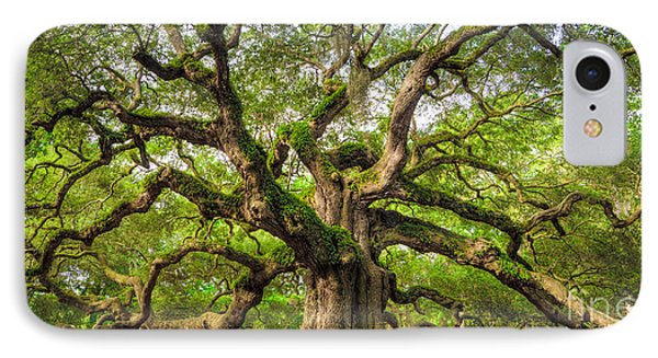 Angel Oak Tree Of Life IPhone Case by Dustin K Ryan