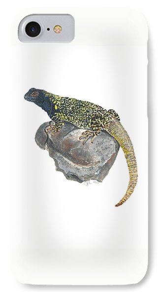 Argentine Lizard IPhone Case by Cindy Hitchcock