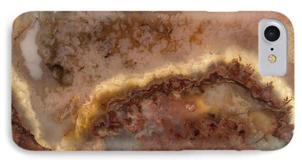 Art In Nature IPhone Case by Leland D Howard
