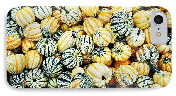 IPhone Case featuring the photograph Autumn Gourds by Crystal Hoeveler