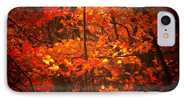 Autumn Leaves IPhone Case by Joyce Kimble Smith