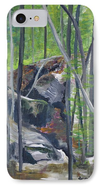 Backyard At Sussex 2 IPhone Case by Dottie Branchreeves