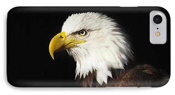 Bald Eagle  IPhone Case by Brian Cross