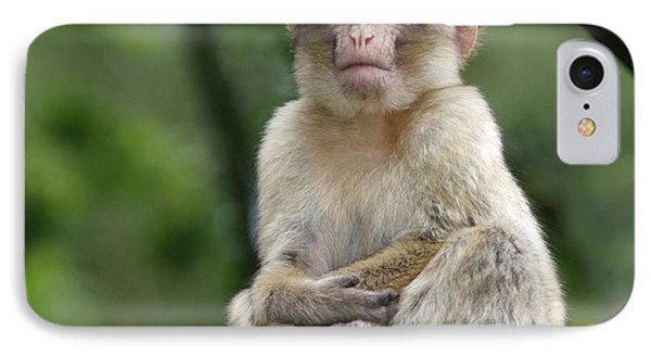 Barbary Macaque IPhone 7 Case by Nigel Downer
