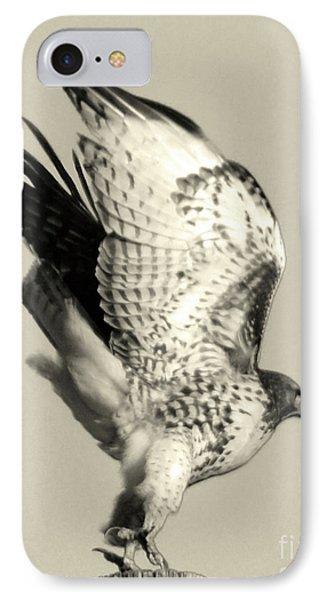 IPhone Case featuring the photograph Beautiful Predator by Suzette Kallen