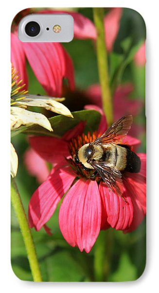 Bee Nice Phone Case by Reid Callaway