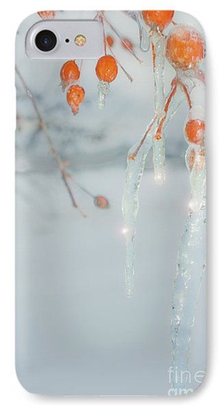 Before The Thaw IPhone Case by Sandi Mikuse