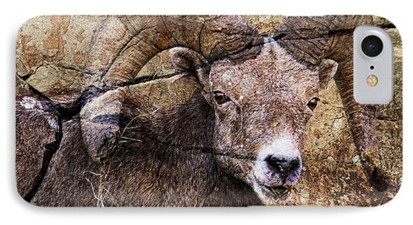 Bighorn Rock IPhone Case by Steve McKinzie